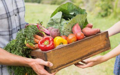 Share-Surplus-Vegetables-blog